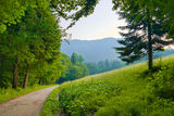 Path by the park in the mountains. Stock Image