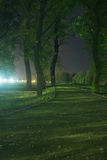 Path through park at night Royalty Free Stock Photo