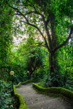 Path in the park Pura Goa Lawah, Bali, Indonesia Stock Images