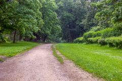 Path in the park. Summer view of the path in the green park stock photos