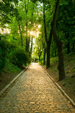 Path in park, Vysehrad, Prague, Royalty Free Stock Images