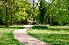 Path into a park. A winding path leading into a park area Royalty Free Stock Images