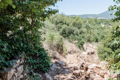 Path  passing through a wooded slope and descending to the Amud Stock Image
