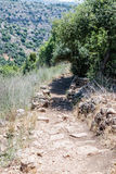 Path  passing through a wooded slope and descending to the Amud Stock Photos