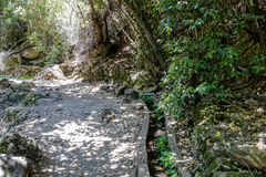 Path  passing through a wooded slope and descending to the Amud Royalty Free Stock Photo