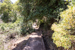 Path passing through a wooded slope next to a small water channel and descending  to the Amud River Royalty Free Stock Photography