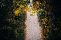 The path of paving stones Royalty Free Stock Photography