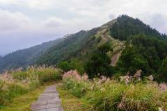 Path on the peak of mountain stock photo