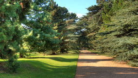 Path in picturesque park Royalty Free Stock Images