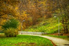 Path in the public garden in the autumn Royalty Free Stock Image