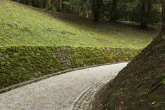 Path in the garden  Stock Photos
