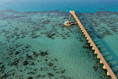 A path on the red sea reef Stock Photo