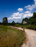 Path through the rice fields. In Yangshuo, China Royalty Free Stock Images