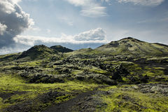Path among rocks covered with moss at Lakagigar area, Iceland Royalty Free Stock Image