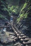 Path through rocky canyon Stock Photo