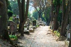 A path in a romanian cemetery. Biserica din Deal cemetery, a path Stock Photos