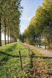 Path between rows of trees in a Dutch rural landscape. The photo was taken in the Oranjepolder in Oosterhout, North Brabant. It was a sunny day in the fall stock photography