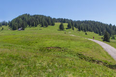 Path through rural mountain landscape in summer, near Walderalm, Austria, Tirol Royalty Free Stock Images