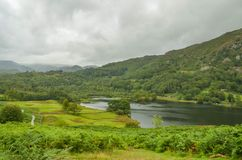 The path beside Rydal Water royalty free stock photo