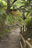 Path in San juan de Gaztelugatxe, Bilbao, Spain Royalty Free Stock Photography