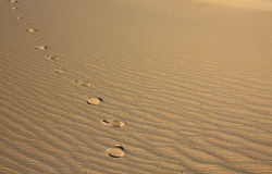 Path on the sand. Foot prints on the sand in the desert Royalty Free Stock Photo