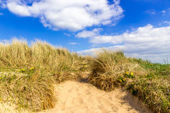Path in a Sand Dune Stock Photo