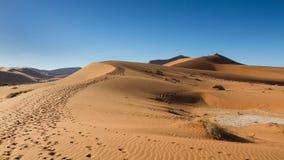 Path on the sand dune Stock Photo