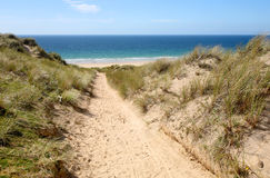 A path through the sand dunes. A path through the sand dunes to the beach.  Gwithian Towans, Cornwall, UK Royalty Free Stock Images