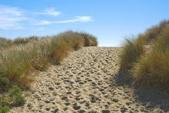 Path through sand dunes. Well-trodden path through sand dunes to sandy beach beyond Stock Photography