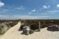 Path through sand dunes, Studland Nature Reserve Stock Photos
