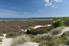 Path through sand dunes, Studland Nature Reserve Stock Photography