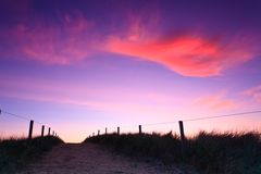 Path in the sand dunes at sunset Royalty Free Stock Image