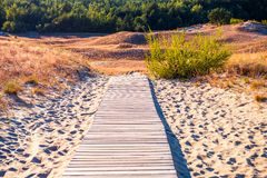 Path through sand Royalty Free Stock Photography