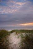 Path through sanddunes to beach. At sunset Stock Image