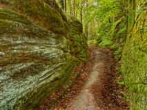 Path in sandstone rocks, Bohemian Paradise Royalty Free Stock Photo
