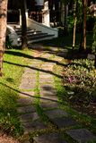 The path on site in Thailand. Stones among the grass at sunset royalty free stock images