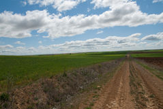 Path and sky. Arable Agricultural in central Spain Royalty Free Stock Photos