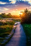 Path sky sunset sunrise. Evening rural landscape. A path in the rays of the setting sun. Sunset and sunrise Royalty Free Stock Image
