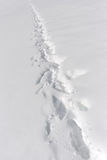 Path through snow Royalty Free Stock Photography