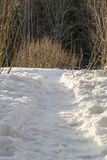 Path in Snow Royalty Free Stock Photography