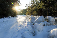Path in the snow in a cold day. Path in the snow in a cold winter day Stock Photography