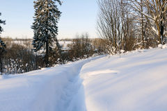 Path in the snow in a cold day. Path in the snow in a cold winter day Royalty Free Stock Photos