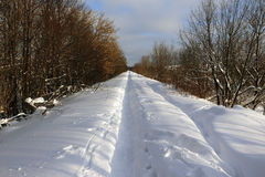 Path in the snow. In a cold winter day Stock Images