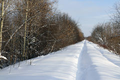 Path in the snow in a cold. Winter day Stock Photo