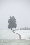 Path on snow hills during snowstorm Stock Image