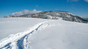 Path in snow leading to top of the mountain. Narrow path in fresh snow, leading to the top of the Slivnica mountain near Cerknica, Slovenia Royalty Free Stock Photos