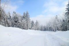 Path in snow mountain Royalty Free Stock Photo
