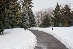 Path through the snow. At the New York botanical Garden Royalty Free Stock Image