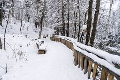 A path in a snow park. Of the Ukrainian city of Yaremche. Several wooden benches and a fence on the rock Royalty Free Stock Photography