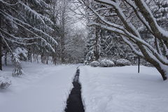 Path on the snow Stock Images